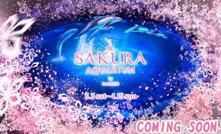 「SAKURA AQUARIUM by NAKED」まもなく開催!!